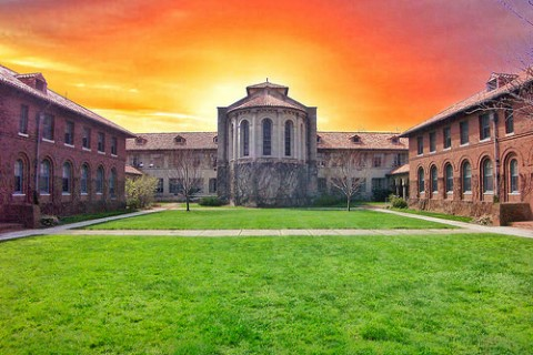 scholarship-grants-8-480x320 アメリカ大学奨学金事情、知らなければ地獄。日本の大学は?