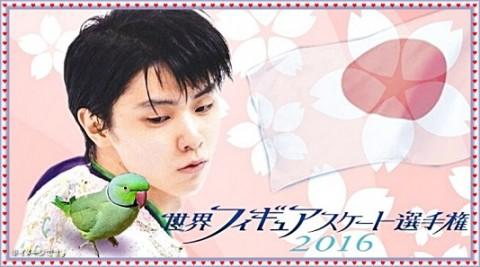hanyu-ten-eikaiwa2-480x267 羽生結弦のデニステン妨害事件から学ぶ難しい英語を2分で!