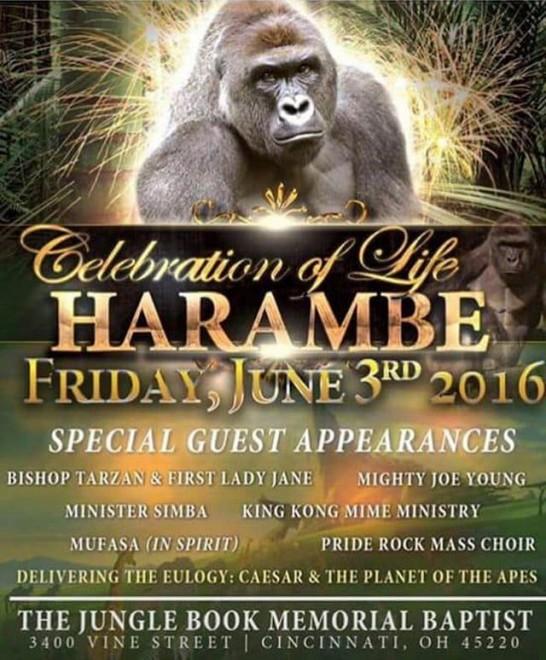 harambe-the-gorilla-funny-pictures-06-640x774-546x660 米ゴリラ事件から学ぶ難しい英語表現5選