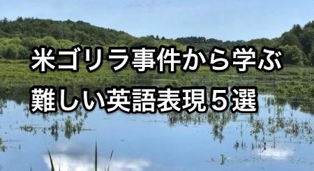 harambe-logo 米ゴリラ事件から学ぶ難しい英語表現5選