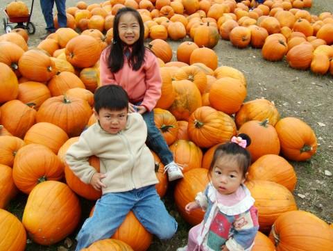 2004_1202Image0281-480x361 アメリカハロウィン2016画像!仮装の子供とお菓子はこんな感じ?