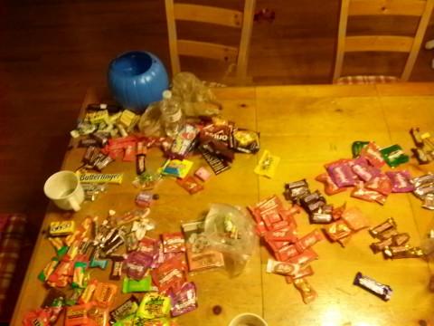 halloween5-480x360 アメリカハロウィン2016画像!仮装の子供とお菓子はこんな感じ?