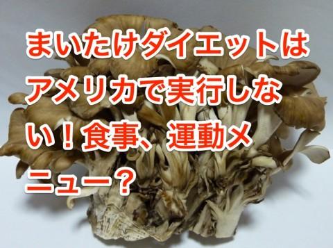maitake-diet-logo-480x357 まいたけダイエットはアメリカで実行しない!食事、運動メニュー?